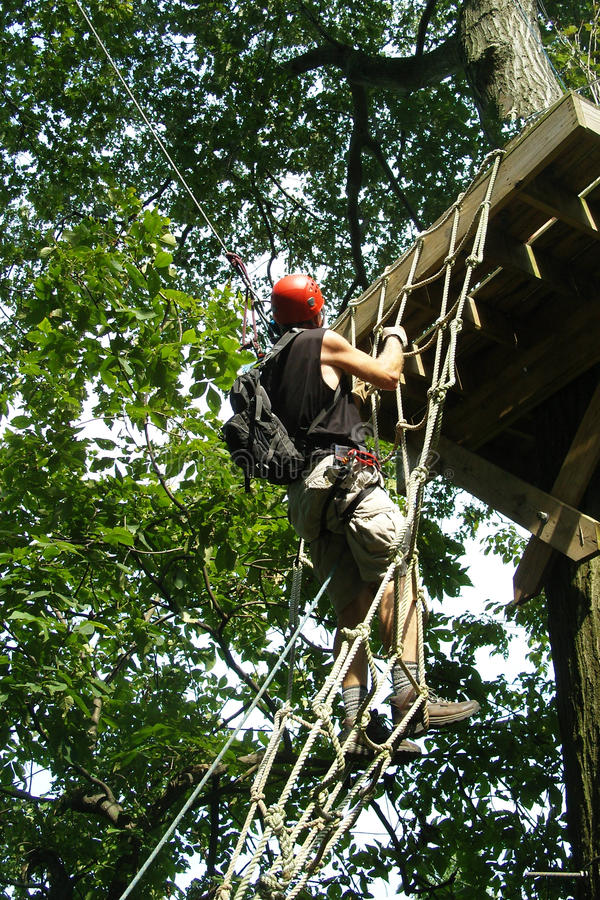 Adventure Seeker. Man suspended on a rope ladder on an alpine adventure course stock photography