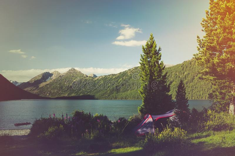 Adventures Camping and tent under royalty free stock images