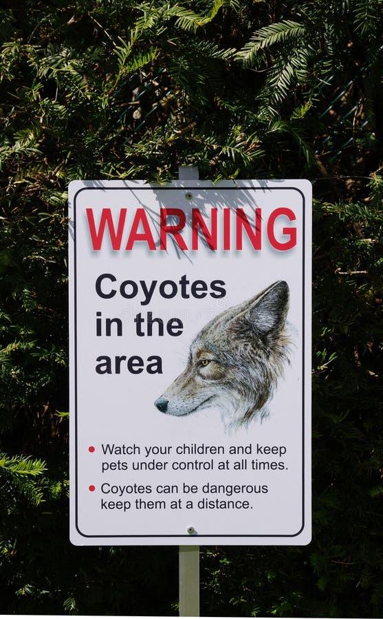 Advertência, chacais na área no parque, Canadá imagens de stock royalty free
