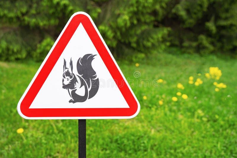 Advertencia roja de la muestra del triángulo de las ardillas de la presencia en el fondo de árboles verdes en el parque imagen de archivo libre de regalías