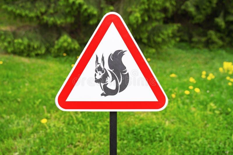 Advertencia roja de la muestra del triángulo de las ardillas de la presencia en el fondo de árboles verdes en el parque fotos de archivo