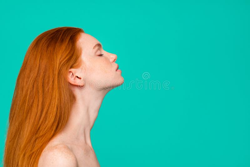 Advertising concept. Side view portrait of nice nude tender gentle dyed red-haired girl, shiny pure skin, healthy hair. Closed eyes copy empty blank space stock photos
