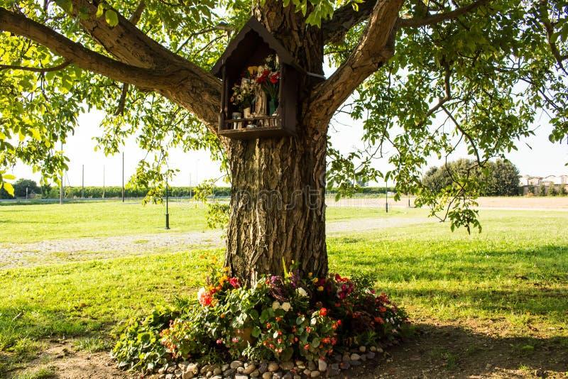 Aedicula votif sur un arbre photographie stock libre de droits