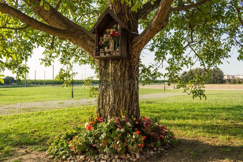 Aedicula votif sur un arbre image stock