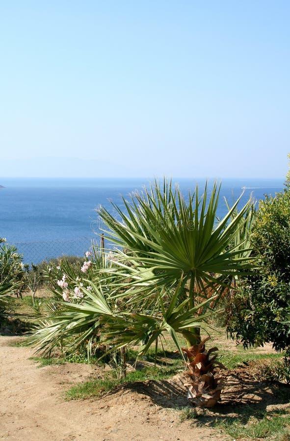 Aegean coast sea royalty free stock image