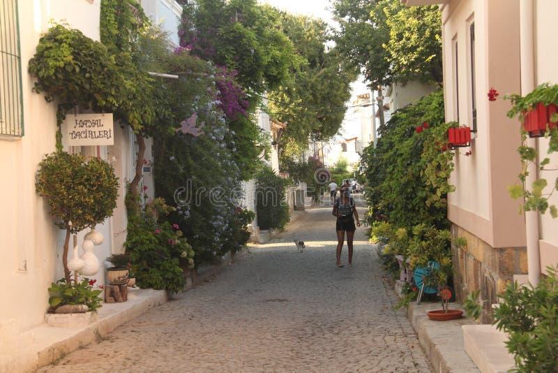 Aegean område - den Tenedos ön, gata blommas fullständigt arkivfoton