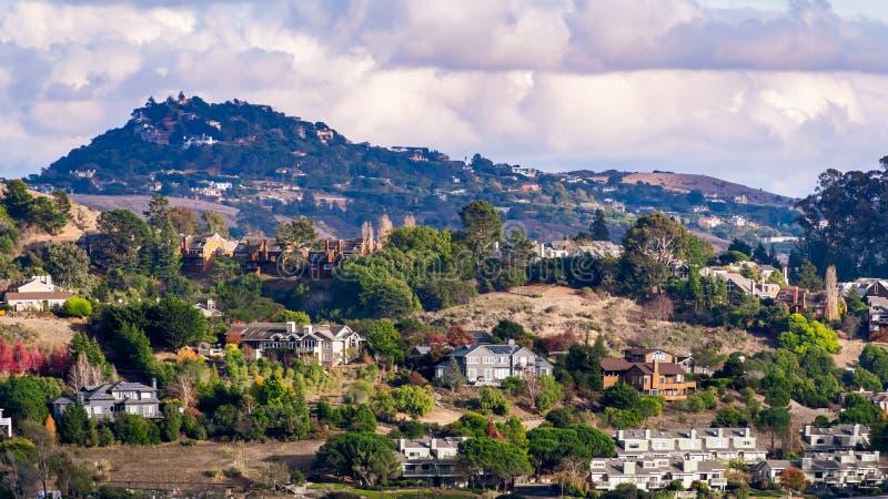 Aerantvy över bostadsområden med utspridda hus på sluttningar i bergsområden, Mill Valley, North San Francisco Bay Area. royaltyfri bild