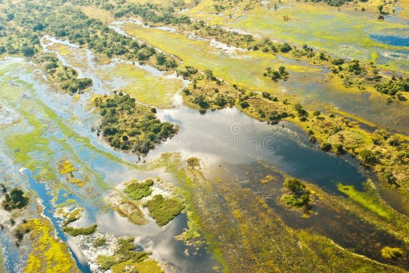 Aerea inundado do delta de Okavango em Botswana fotografia de stock