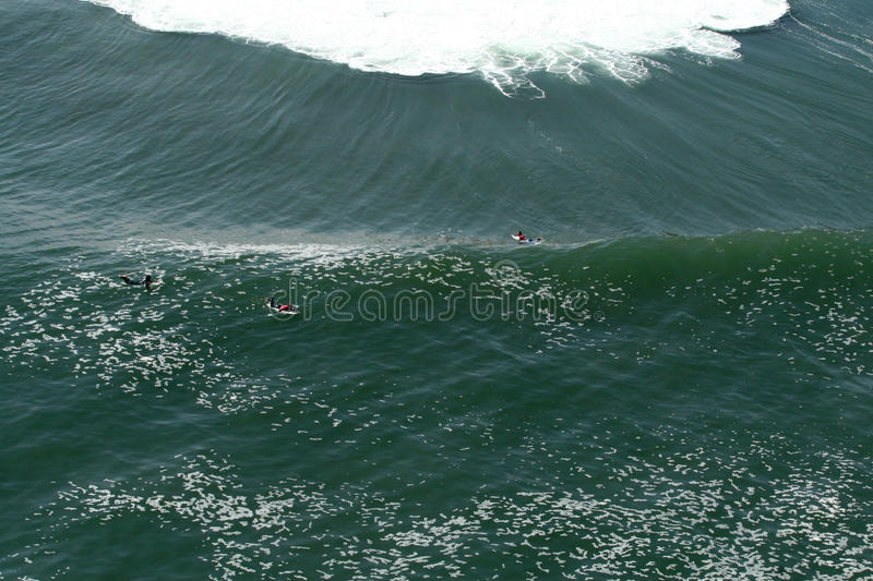 Aereal view of surfers during a contest stock images