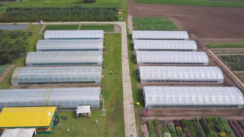 Aerial agricultural view of lettuce production field and greenhouse. Clip. Top view of the greenhouse royalty free stock image