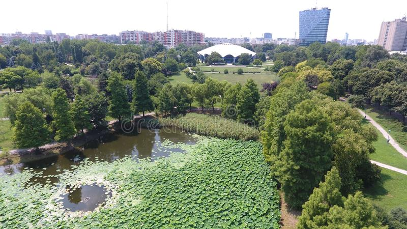 Aerial drone flight over a beautiful pond filled with water lilies. In the Summer season royalty free stock photography