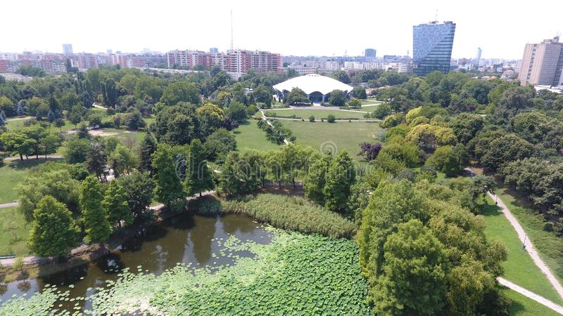Aerial drone flight over a beautiful pond filled with water lilies. In the Summer season stock image