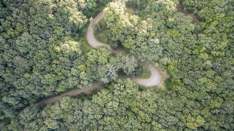 Aerial drone image of a twisty road in Corfu Greece. Aerial drone image of a twisty road in between the forest in Corfu Greece royalty free stock photo