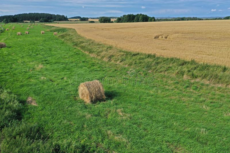 Aerial drone perspective view on rural landscape with wheat field, green meadow and hay bales stock photos