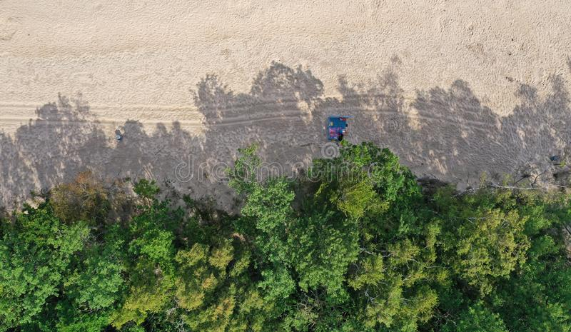Aerial drone top down view on clean sand beach, green deciduous forest and resting people on blanked in tree shadows hiding from royalty free stock photography