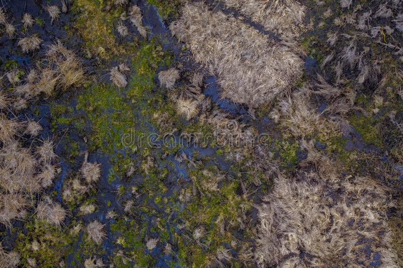 Aerial drone view of small marshland on sunny spring evening day royalty free stock images