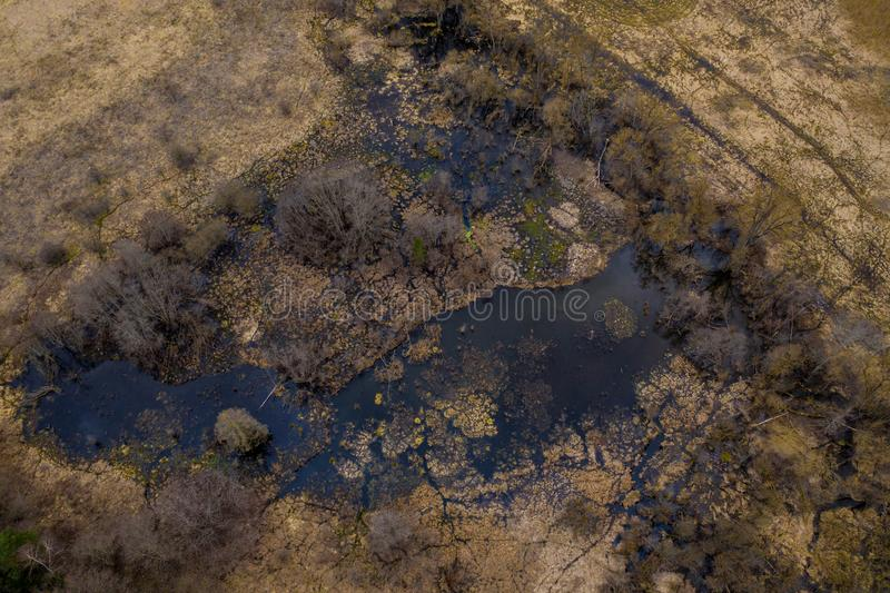 Aerial drone view of small marshland on sunny spring evening day royalty free stock photos