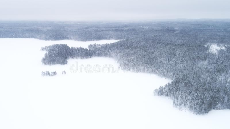 Aerial drone view of a winter landscape. Snow covered forest and lakes from the top. Aerial photography royalty free stock photos