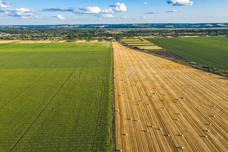 Aerial Flying over fields with straw bales at harvesting time, sunflowers and maize or corn, sunset time, top view. Far village. Sight under cloudy sky royalty free stock photography