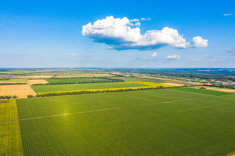 Aerial Flying over fields with straw bales at harvesting time, sunflowers and maize or corn, sunset time, top view. Far village. Sight under cloudy sky royalty free stock photo
