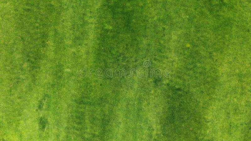 Aerial. Green grass lawn texture background. Top view from drone stock image