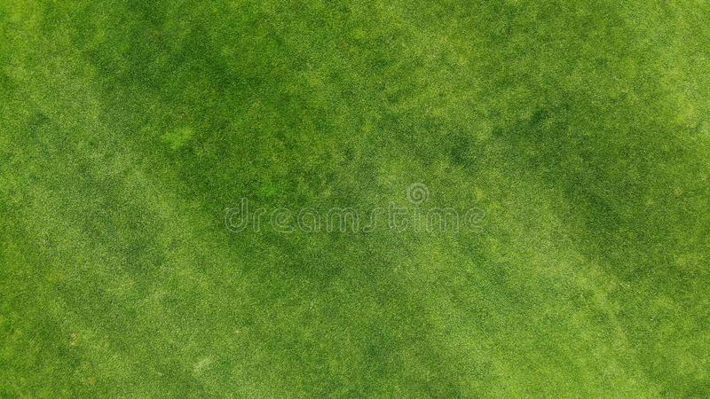 Aerial. Green grass lawn texture background. Top view from drone stock photos