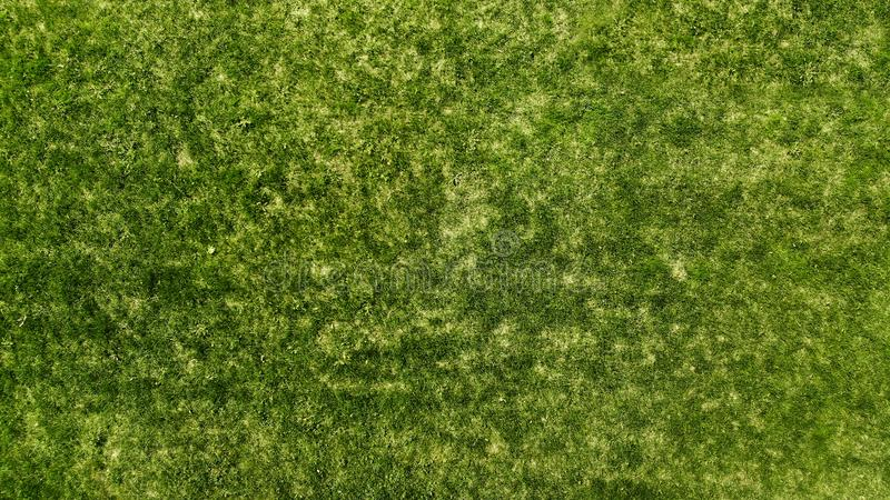 Aerial. Green grass texture background.  Natural turf. stock images