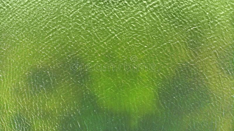 Aerial. Green lake water texture. stock photography