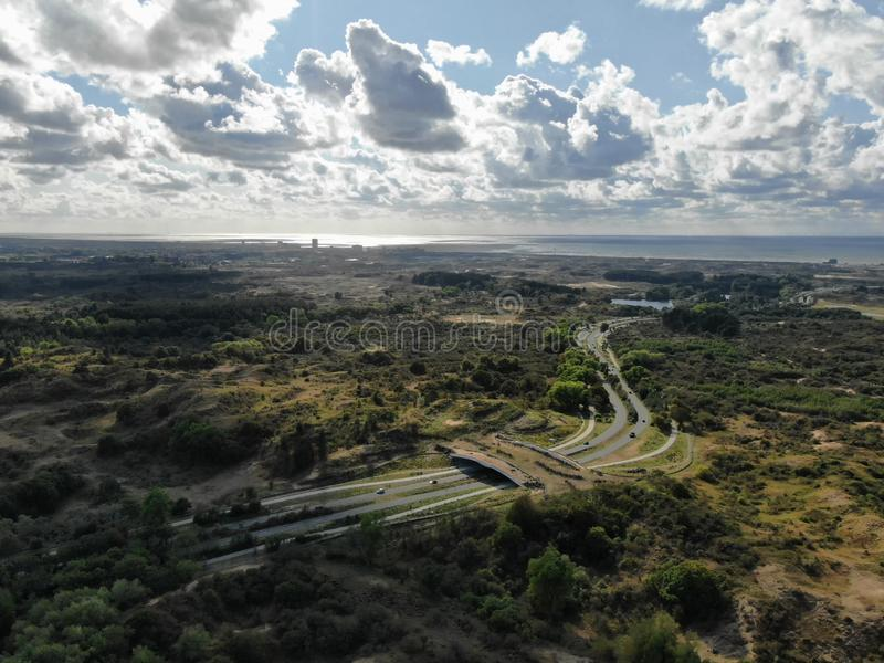 Aerial image of ecoduct crossing highway in dunes national park in the Netherlands. Aerial image shot by drone of ecoduct crossing highway in dunes national park royalty free stock photo