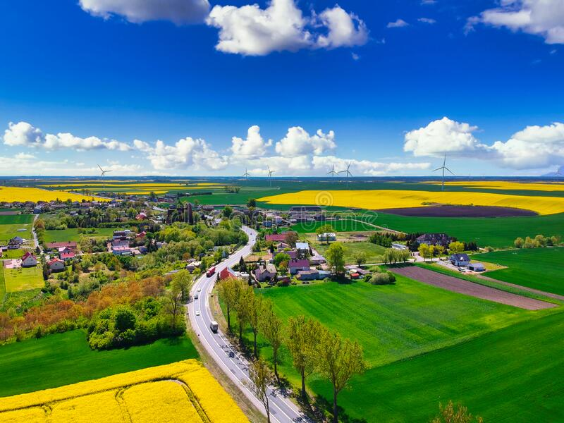 Aerial landscape of the yellow rapeseed field under blue sky, Poland royalty free stock photography