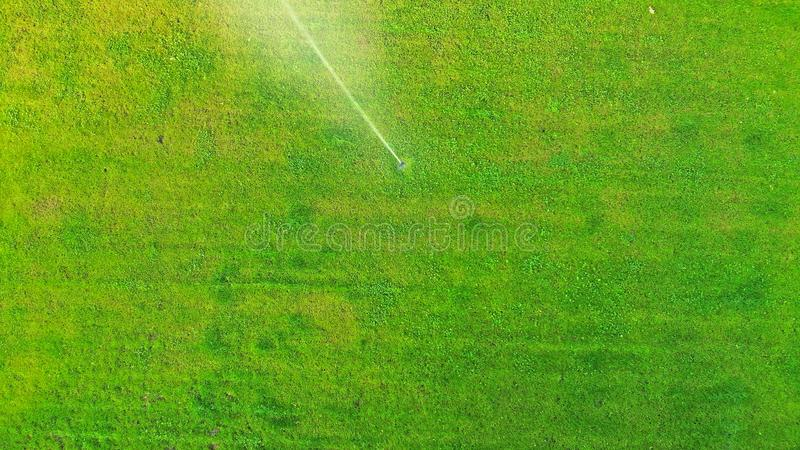 Aerial. Lawn watering. Top view. royalty free stock images