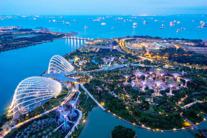 Download Aerial Night View Of The Supertree Grove At Gardens Near Marina Bay.  Editorial Stock