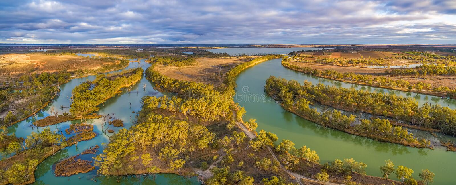 Aerial panorama of Murray River and Wachtels Lagoon. Aerial panorama of Murray River and Wachtels Lagoon among islands of gum trees at sunset. Riverland, South royalty free stock photography
