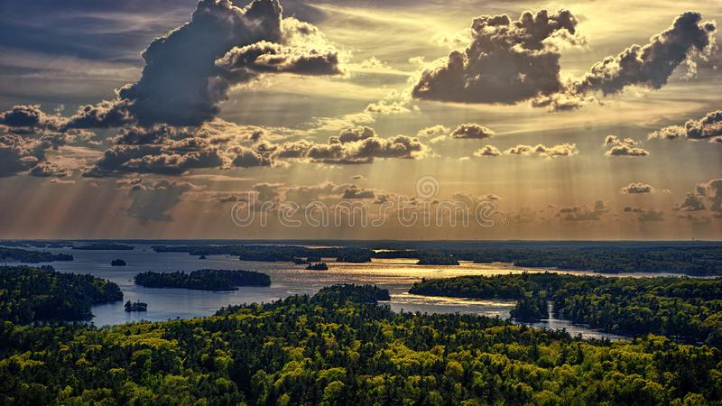 Aerial Photo Of Forest Beside Body Of Water royalty free stock image