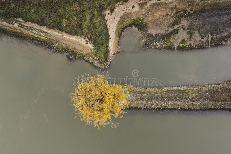 Aerial photo of tree in autumn. Aerial photo of indian summer in the Netherlands. A tree next to the river royalty free stock images