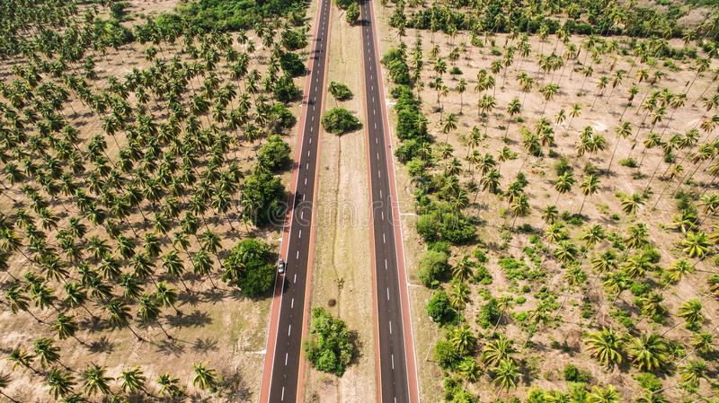 Aerial Photo of Two Gray Roads Surrounded by Trees stock image