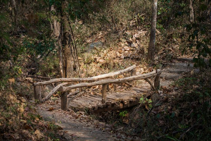 Aerial photography above Mae Sa waterfall. Old wooden bridge across canal in Mae Sa waterfall in Doi Suthep and Doi Pui national park,Chiang Mai,Thailand royalty free stock images