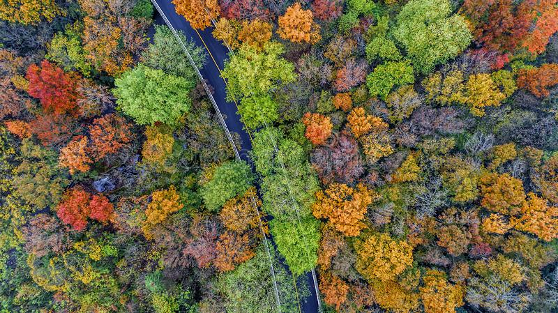 Aerial photography - botanical garden autumn scenery stock image