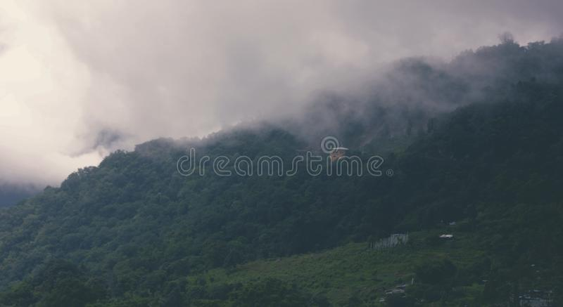 Aerial Photography of Forest With Foggy Clouds royalty free stock images