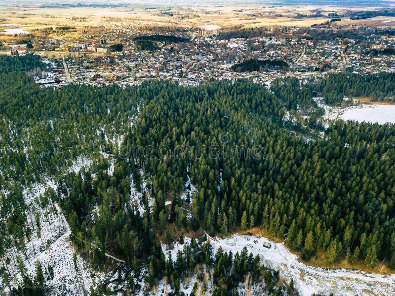 Aerial Photography of a Forest in Winter. Top Down View royalty free stock images