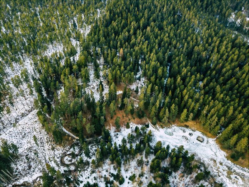 Aerial Photography of a Forest in Winter. Top Down View stock images