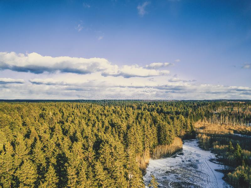 Aerial Photography of a Forest in Winter - Vintage look edit stock image