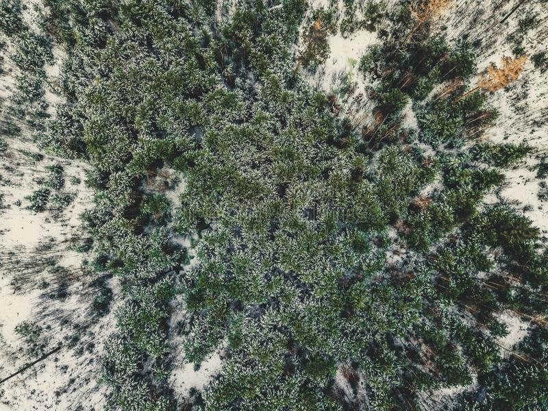 Aerial Photography of a Forest in Winter - vintage look edit stock photo