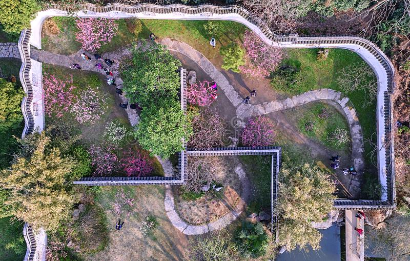 Aerial photography - Meihuashan Wanmu Meiyuan royalty free stock photography