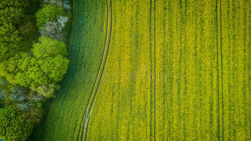 Aerial Photography of Wide Green Grass Field royalty free stock image