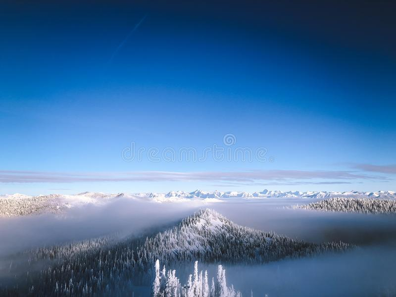 Aerial shot of snowy mountain tops with trees above the cloud with a clear sky in the background. An aerial shot of snowy mountain tops with trees above the stock photo