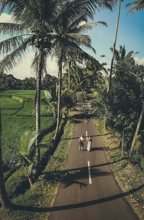 Aerial shot of young couple walking among coconut palm trees. Bali island. stock photography