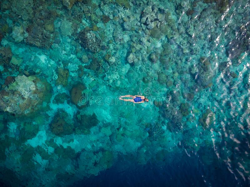 Aerial top down people snorkeling on coral reef tropical caribbean sea, turquoise blue water. Indonesia Wakatobi archipelago, royalty free stock photography