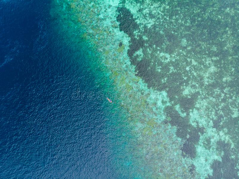 Aerial top down people snorkeling on coral reef tropical caribbean sea, turquoise blue water. Indonesia Wakatobi archipelago, stock photos