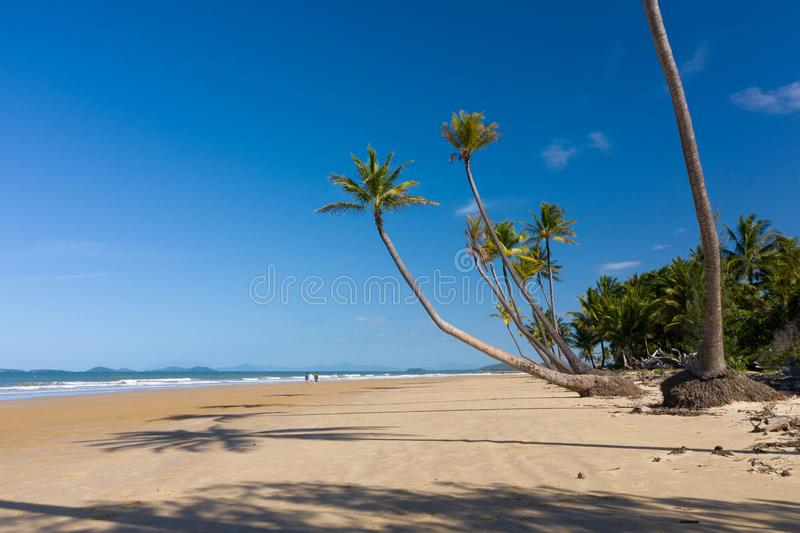 Aerial top view of beach with white sand, beautiful palm trees and warm turquoise tropical water royalty free stock photos